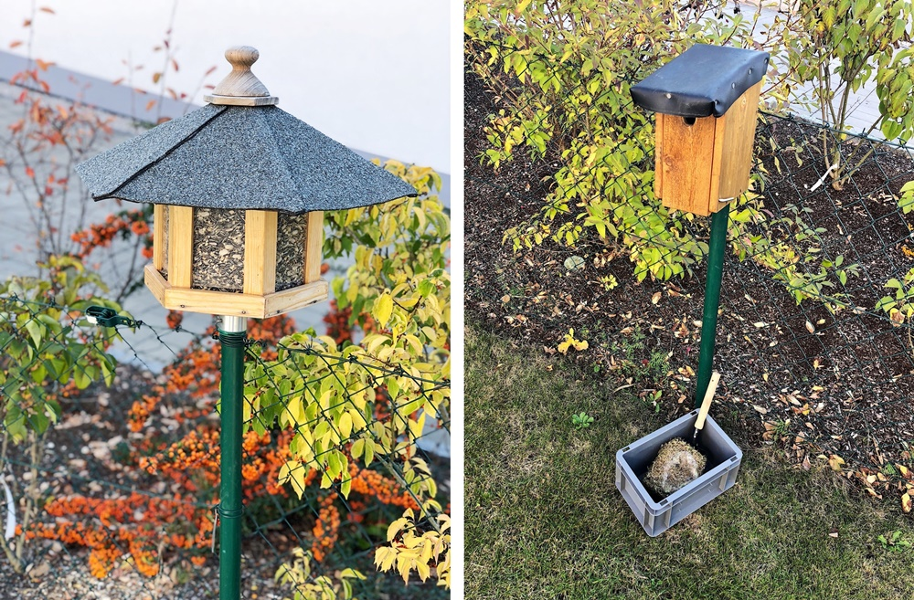 Meine Tipps Um Den Garten Herbstfit Winterfest Zu Machen
