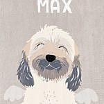 Max-wuschelhund-tibet-terrier-tibetan-terrier-zobel-bester-hund-regenbogenbrücke-wir-vermissen-dich